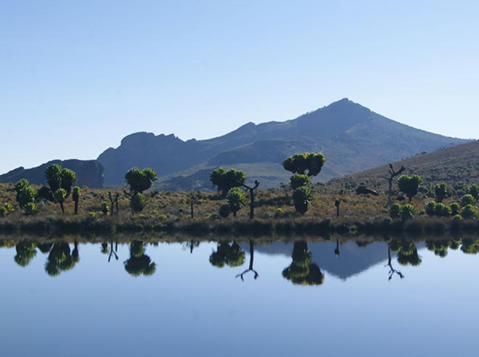 Mount Elgon