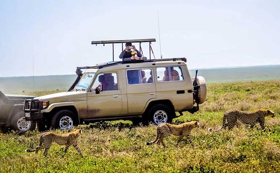 Africa Car Rental